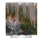 Wolf Creek Pass Forest Landscape Shower Curtain