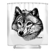 Wolf In Pencil Shower Curtain