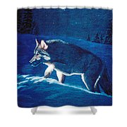 Wolf In The Headlights Shower Curtain