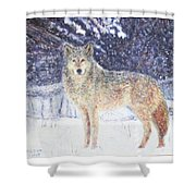 Wolf Of The North Shower Curtain