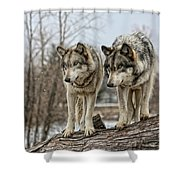 Wolf Pair Shower Curtain