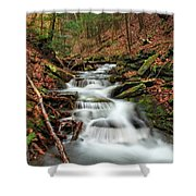 Wolf Run 1 Shower Curtain
