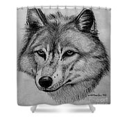 Wolf Sketch Shower Curtain
