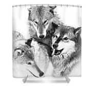 Wolf Triplets Shower Curtain