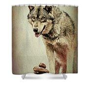 Wolf Wonder Shower Curtain