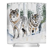 Wolves In The Birch Trees  Shower Curtain