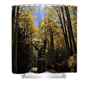 Woman In The Falling Leaves Shower Curtain