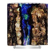 Woman Of The Night Shower Curtain