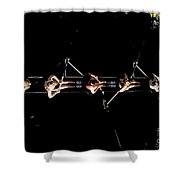 Women Rowing Shower Curtain