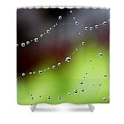 Wonder Web Droplets Shower Curtain
