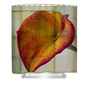 Wonderful Calla Lily Shower Curtain