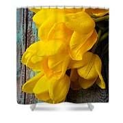 Wonderful Yellow Tulips With Dew Shower Curtain