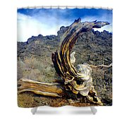 Wood And Lava Shower Curtain