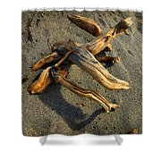 Wood And Sand Shower Curtain