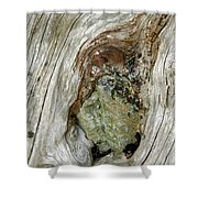 Wood And Stone, Cumbria, England Shower Curtain