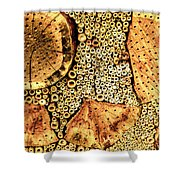 Insect Hotel #2 Shower Curtain