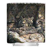Wood Carving Shower Curtain