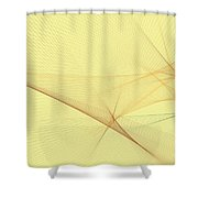 Wood Computer Graphic Line Pattern Shower Curtain