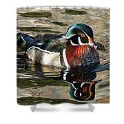 Wood Duck 1 Shower Curtain