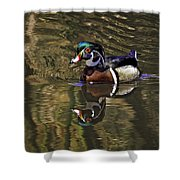 Wood Duck Autumn Reflections Shower Curtain