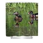 Wood Duck Couple Shower Curtain