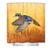 Wood Duck In Flight Shower Curtain