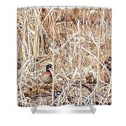 Wood Duck Mates 2018 Shower Curtain