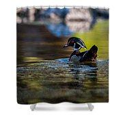 Wood Duck On Mill Creek Shower Curtain