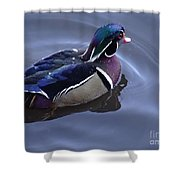 Wood Duck On The Delaware - 06 Shower Curtain