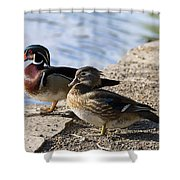 Wood Duck Pair By The Lake Shower Curtain