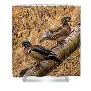 Wood Ducks Shower Curtain
