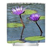 Wood Enhanced Water Lilies Shower Curtain