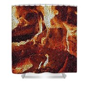 Wood Fire Mosaic Shower Curtain