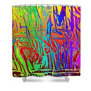 Wood Fire Rainbow Shower Curtain