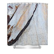Wood Grain Shower Curtain