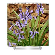 Wood Hyacinth Blue Shower Curtain
