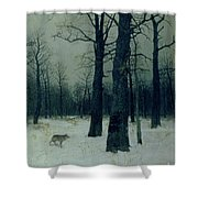 Wood In Winter Shower Curtain