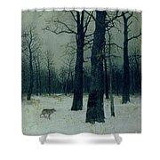 Wood In Winter Shower Curtain by Isaak Ilyic Levitan