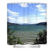 Wood Lake In Summer Shower Curtain