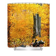 Wood Pile In Autumn Shower Curtain