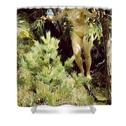 Wood-sprite Anders Zorn Shower Curtain