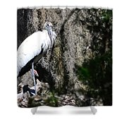 Wood Stork And Moss Shower Curtain