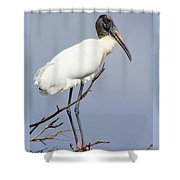 Wood Stork Shower Curtain