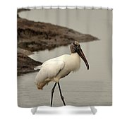 Wood Stork Walking Shower Curtain