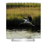 Wood Stork Winged Flight Shower Curtain