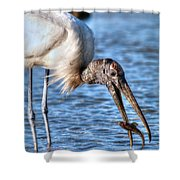 Wood Storks Breakfast Lunch And Dinner Shower Curtain