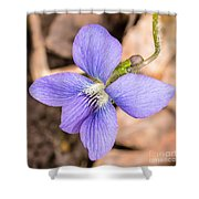 Wood Violet - Full View Shower Curtain