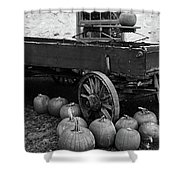 Wood Wagon And Pumpkins Black And White Shower Curtain
