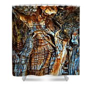 Wood Wrinkles Shower Curtain