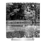 Wooded Pond Shower Curtain